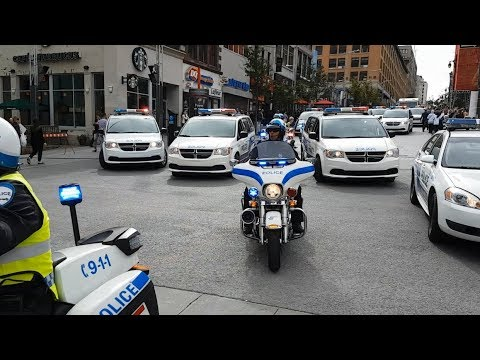 SPVM MONTREAL POLICE IN ACTION AND RESPONDING CALLS - DOWNTOWN - 9 CLIPS
