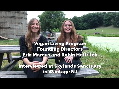 COMPASSION VAN CLOSE UP - VEGAN LIVING PROGRAM DIRECTORS