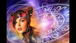 Какая ты кошка по гороскопу?