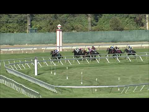 video thumbnail for MONMOUTH PARK 10-04-20 RACE 1