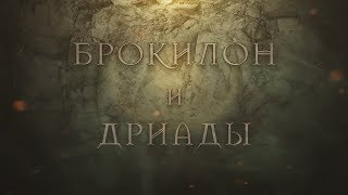 The Witcher: Брокилон и Дриады
