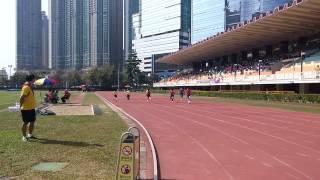 崇真小學運動會(荔枝角運動場)100米初賽 2015 Nov