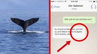 Blue Whale Challenge (Ein tödliches Spiel)