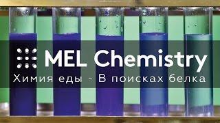 Химия еды - В поисках белка