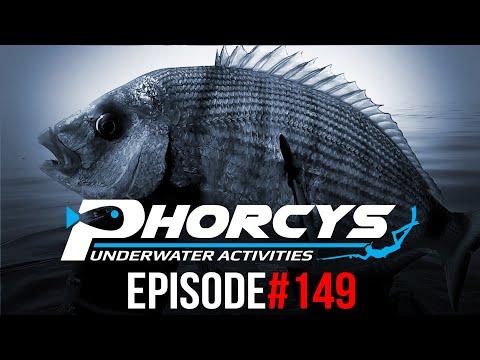 PHORCYS Spearfishing Worldwide Videos #149 - Underwater Activities 2019