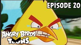 Angry Birds Toons | Run Chuck Run - S1 Ep20