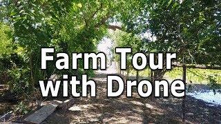 Farm Tour | Where do the animals live?