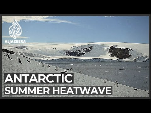 Antarctica: Second record-breaking hot day in a week
