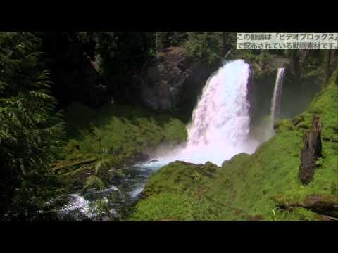 滝 動画素材