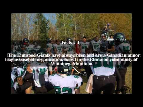 Elmwood Giants Top # 8 Facts
