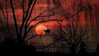Dark Lullaby Music - Melody of Twilight