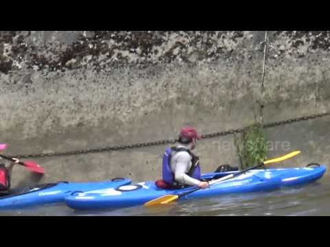 Canoeists help rescue dog from River Thames in London