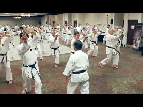 Okinawa Masters Seminar 2017 - Day 2