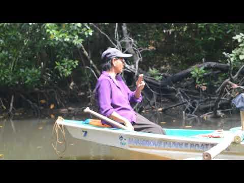 Puerto Princesa Palawan Singing Tour Guide