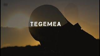 Tegemea