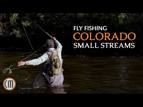 Small Stream Colorado - Colorado Fly Fishing By Todd Moen