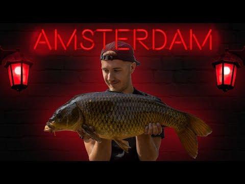 CARP FISHING In AMSTERDAM!