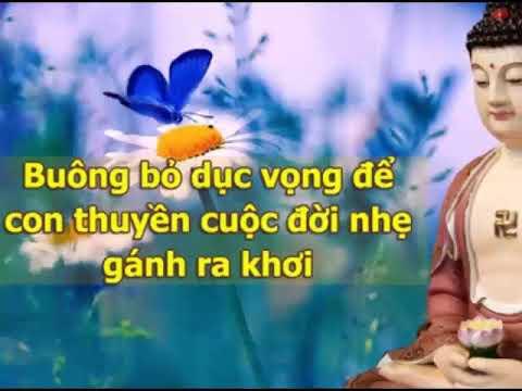 Nhạc Thiền tịnh tâm Vol 14  –  Nhạc Thiền YOGA