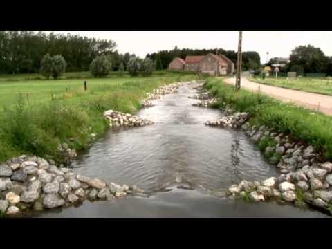 Vlaamse Milieumaatschappij (VMM) - Wat doen we? (korte versie)