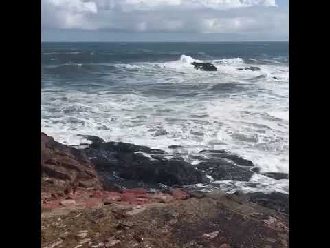 Dunbar harbour waves.
