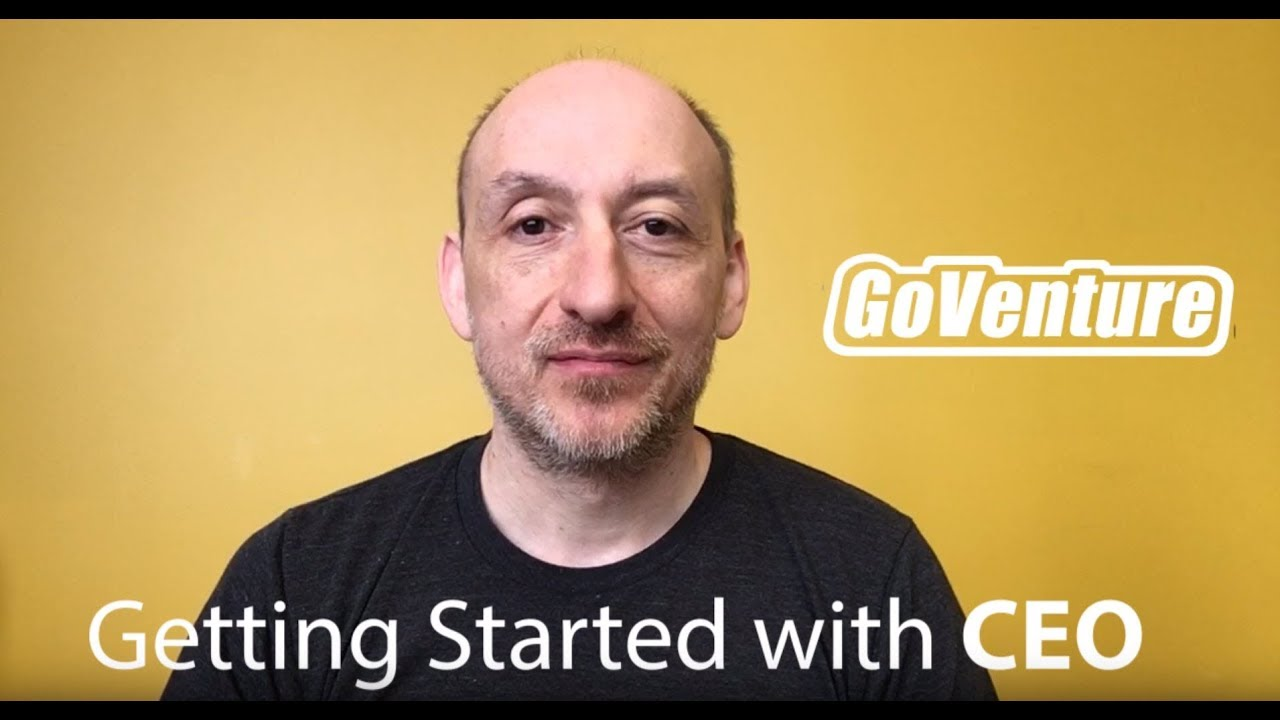 GoVenture CEO — Getting Started for Instructors Who Have Chosen To Adopt This Business Simulator
