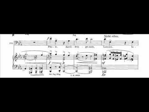 Pater Ecstaticus aria (Mahler) - José Antonio López, barítono