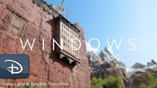 The Rohde's, Less Traveled: Windows of Disney's Animal Kingdom Theme Park | #DisneyMagicMoments