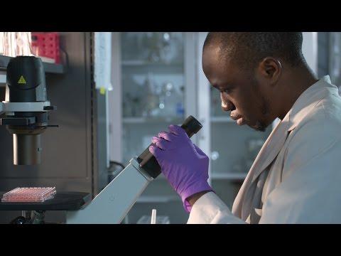 Johns Hopkins Biochemistry And Molecular Biology