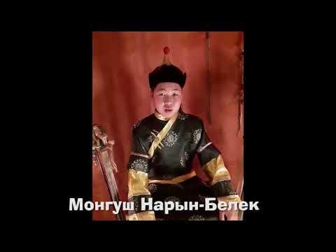 Монгуш Нарын-Белек Участник №15. Категория А.