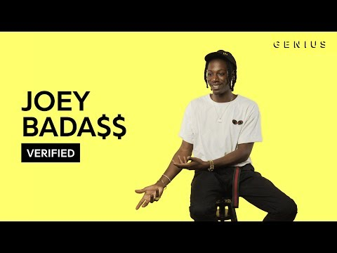 "Joey Bada$$ ""Survival Tactics"" Official Lyrics & Meaning 