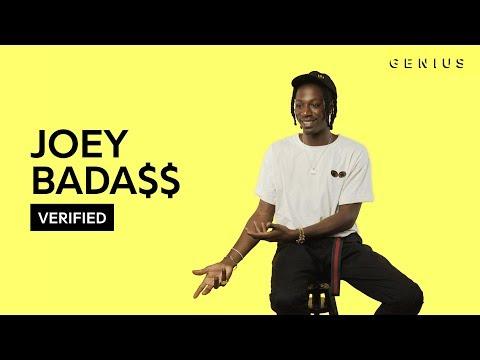 "Joey Bada$$ ""Survival Tactics"" Official Lyrics & Meaning | Verified"