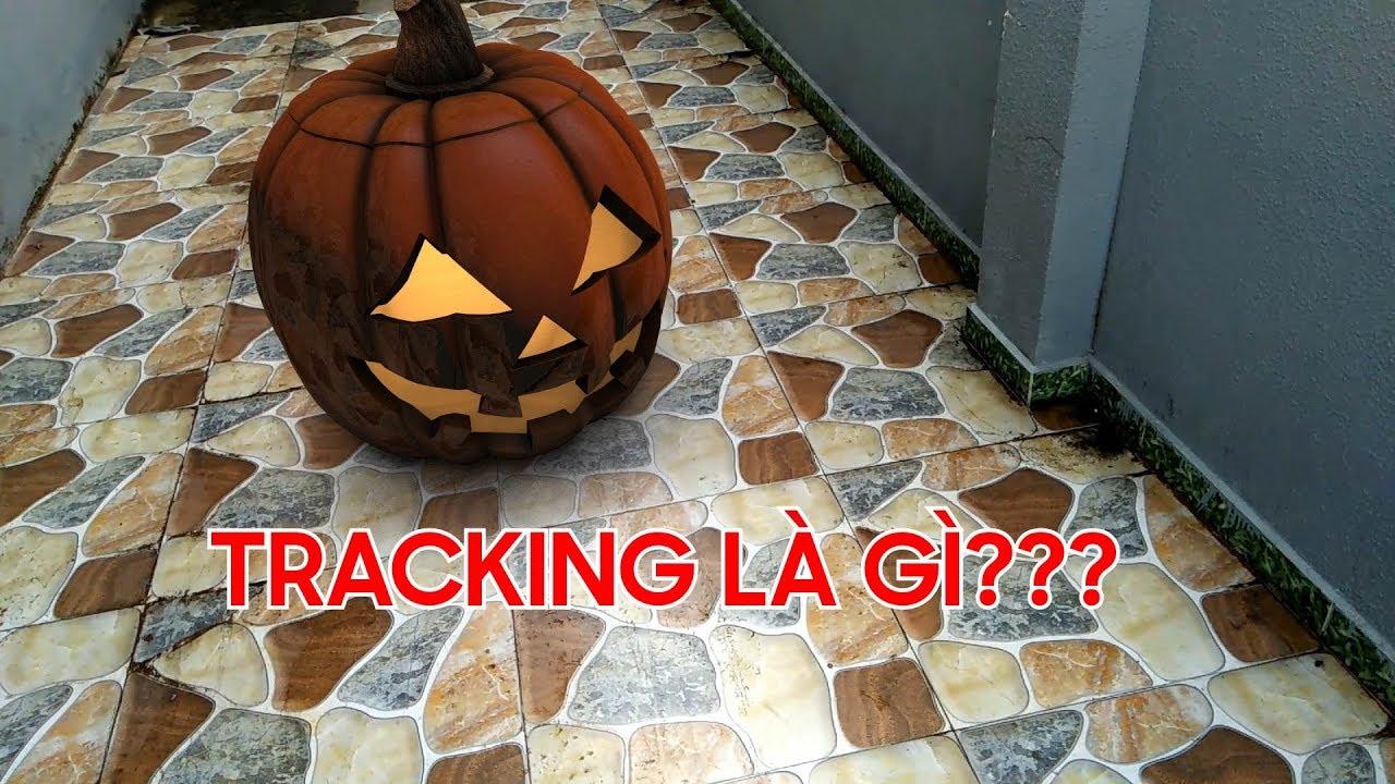 Thế nào là tracking, khi nào track 2d khi nào track 3d và dùng element 3d?  tracking là gì?