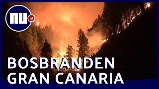Bekijk beelden van bosbranden op Gran Canaria