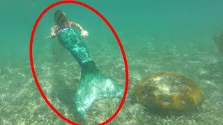 Mermaid Caught on Tape 2017 + BEST MERMAID VIDEOS
