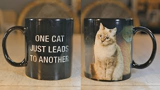 One Cat Leads To Another Heat Changing Cat Mug