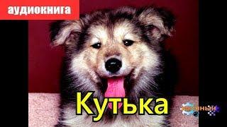 Кутька = Аудиокнига про охоту и собак