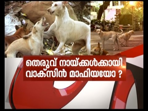 Can show compassion, but stray dogs shouldn't be public nuisance: SC   News Hour Debate 14 Sep 2016