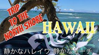 ビーチが開放された後のノースショアのビーチにドライブ、ハレイワを回ってきました。