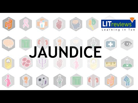A Clinical Approach to Jaundice