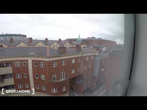 Stylish 1-bedroom apartment with big windows for rent in Dublin City Center - Spotahome (ref 124718)
