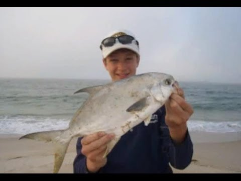 Surf fishing florida for pompano mackerel trout and for Whiting fish florida
