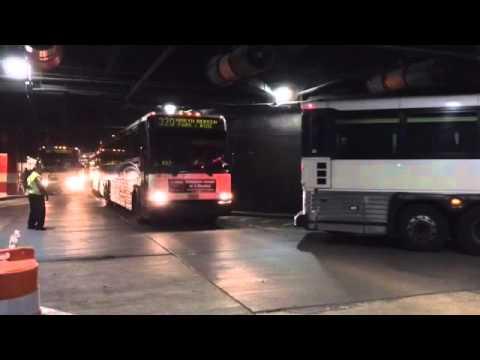 New Buses For NJ Transit