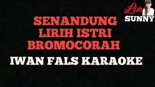 SENANDUNG LIRIH ISTRI BROMOCORAH | IWAN FALS | KARAOKE
