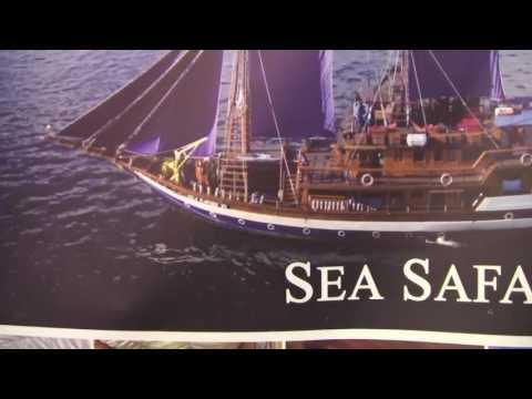 Sea Safari Cruises Indonesiaan Archipelago