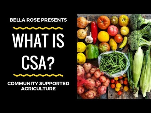 What Is Community Supported Agriculture (CSA)? - Planet Forward Storyfest 2018