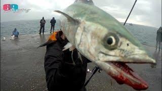 [69jigging] 禁釣解封的大溪漁港咬嗎?今年第一釣就這麼猛... 2019/04/台灣69J釣魚俱樂部(69J Fishing Club)