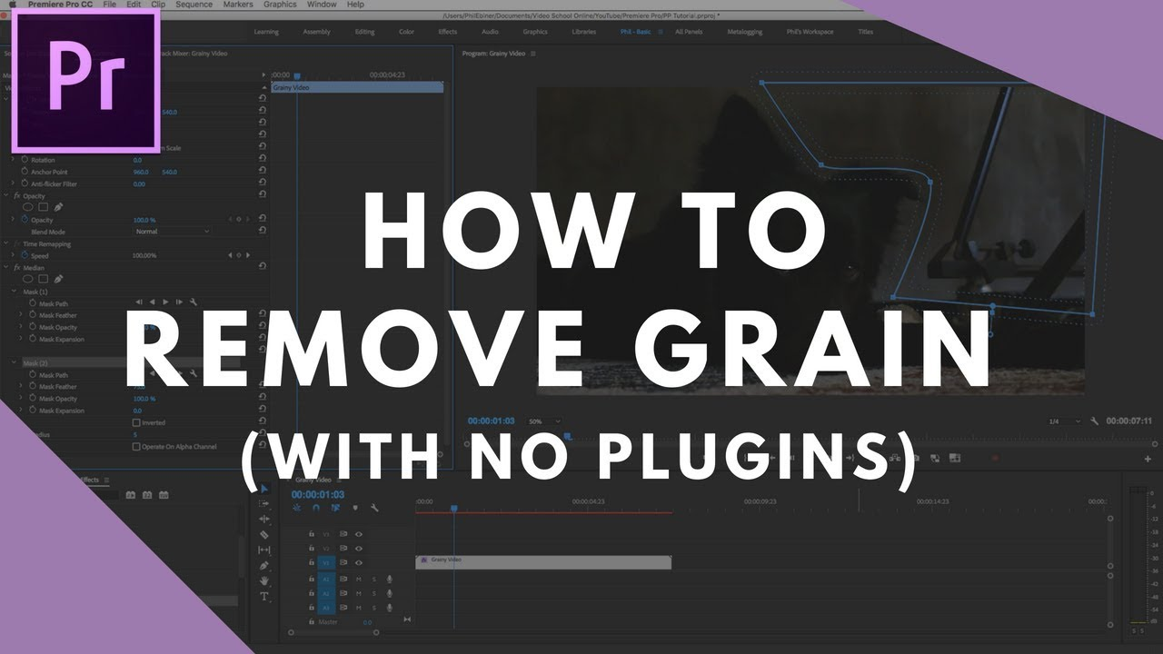 Reduce Grain In Premiere Pro With No Plugins Youtube