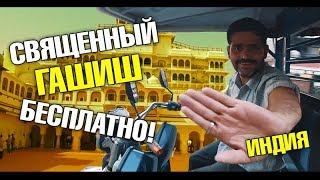 Шок! Священный гашиш бесплатно! Дворец Махараджи. Индийская кино звезда