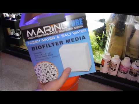 How & Why I'm Adding More Marine Pure To My Sump | Reef Tank