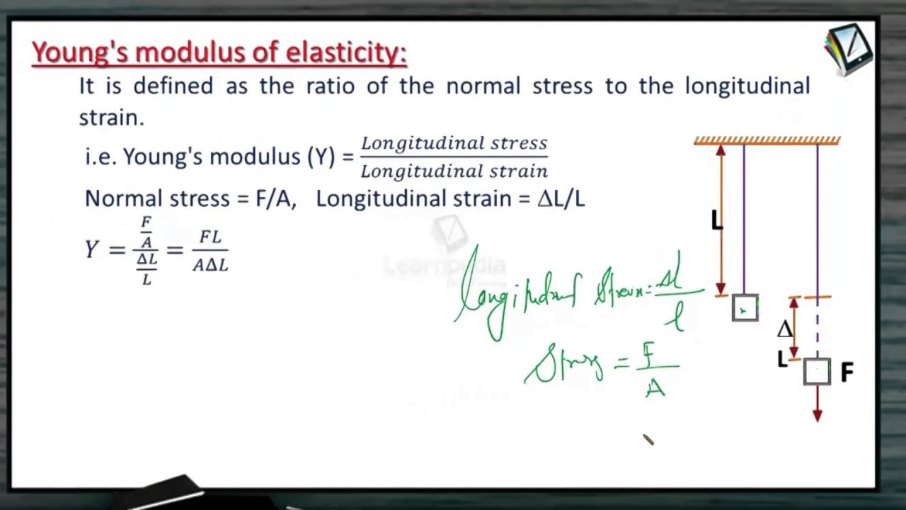 Want To Learn About Young S Modulus Of Elasticity Jee Physics Xi